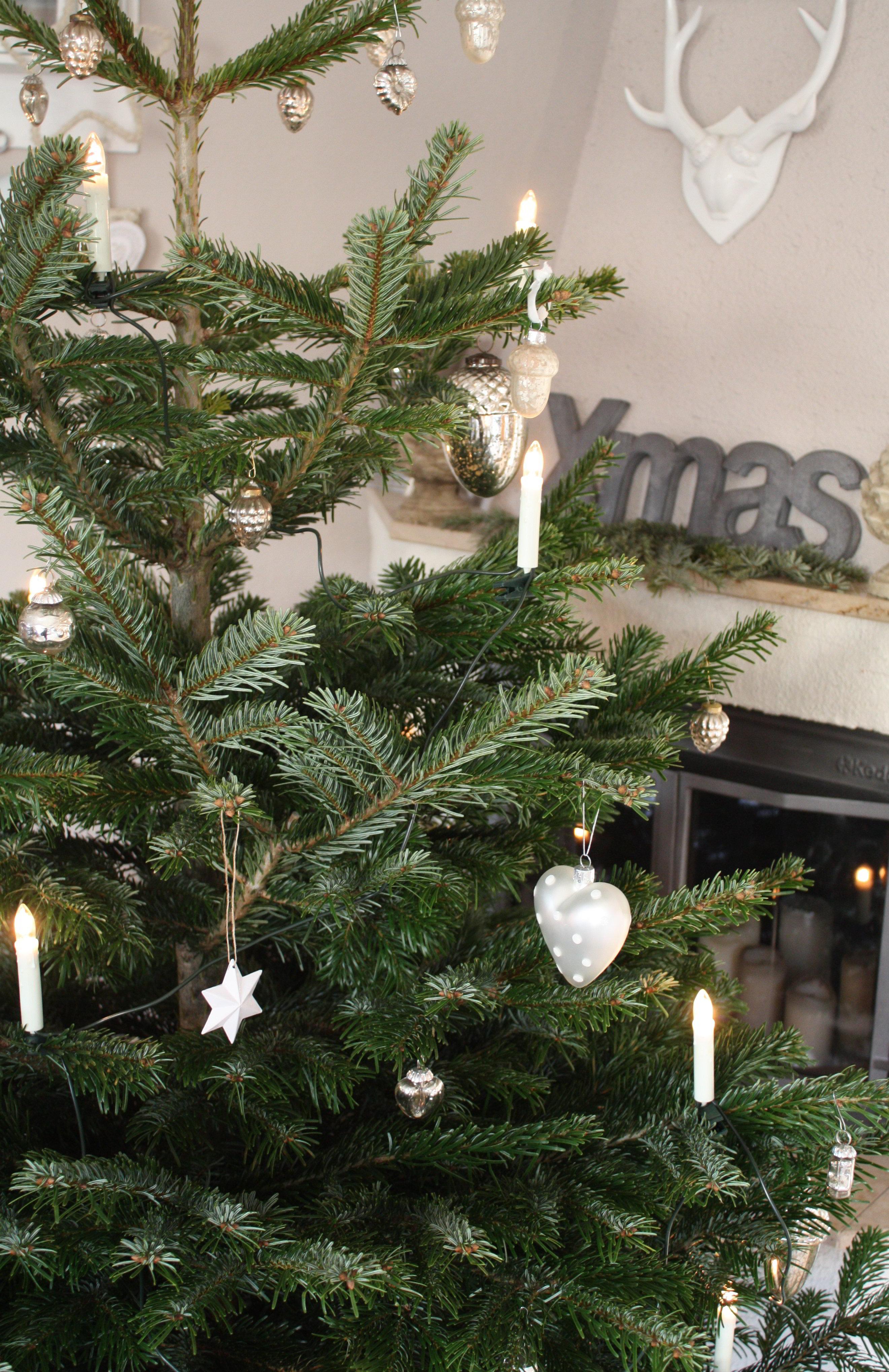 ratgeber weihnachtsbaum kaufen pflegen entsorgen ich. Black Bedroom Furniture Sets. Home Design Ideas