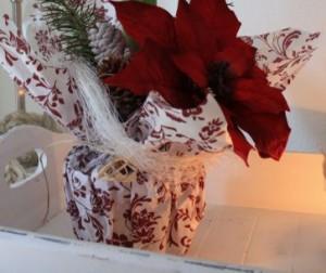weihnachtsstern richtig pflegen ich weiss. Black Bedroom Furniture Sets. Home Design Ideas