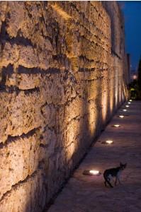 Palma de Mallorca bei Nacht (Foto: Immanuel Bloch/flickr)