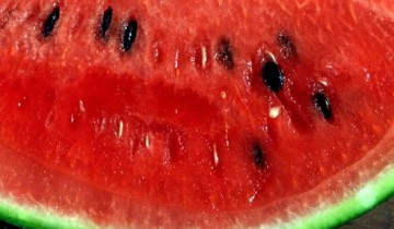 Wassermelone pur (Foto: Chris RubberDragon/CC BY-SA 2.0)